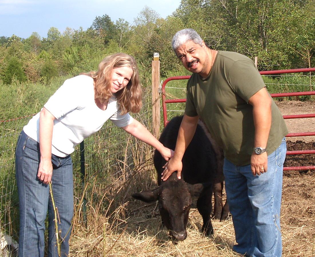 Pink Guitar Farm | (Mis) Adventures in sustainable rural farming ...